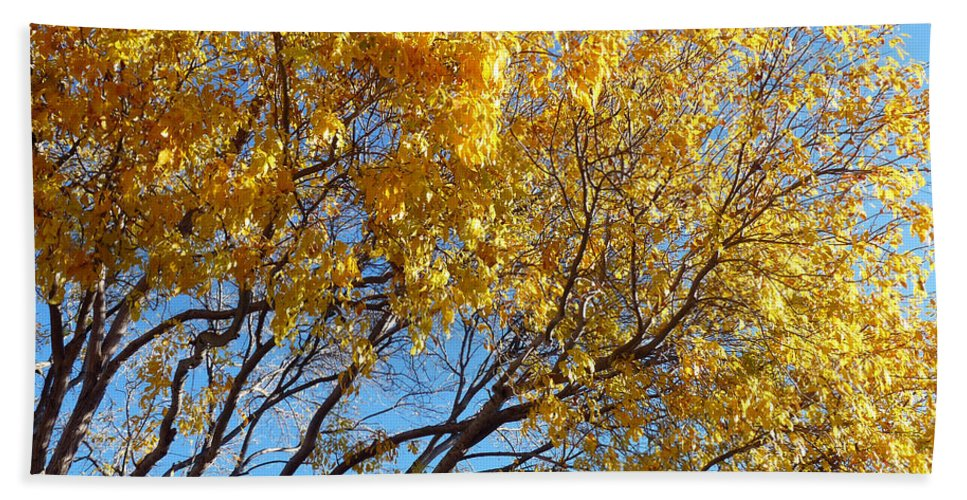 Tree Bath Sheet featuring the photograph Golden Boughs by Rhonda Chase