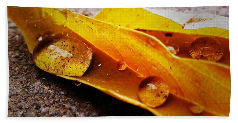 Autumn Bath Sheet featuring the photograph Golden Droplets by LKB Art and Photography