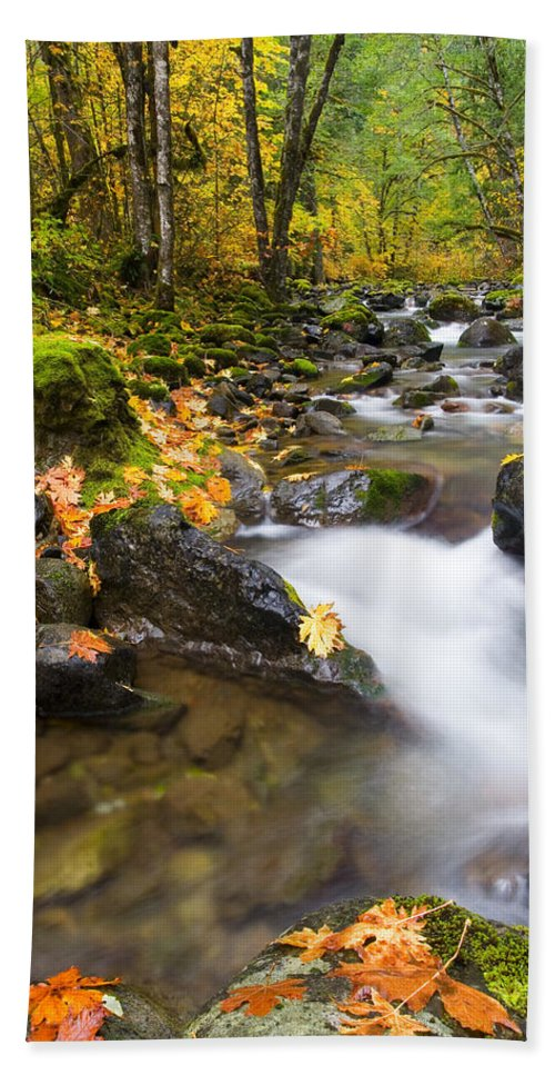 Fall Bath Sheet featuring the photograph Golden Grove by Mike Dawson