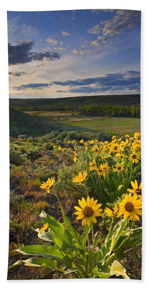 Balsamroot Bath Sheet featuring the photograph Golden Hills by Mike Dawson