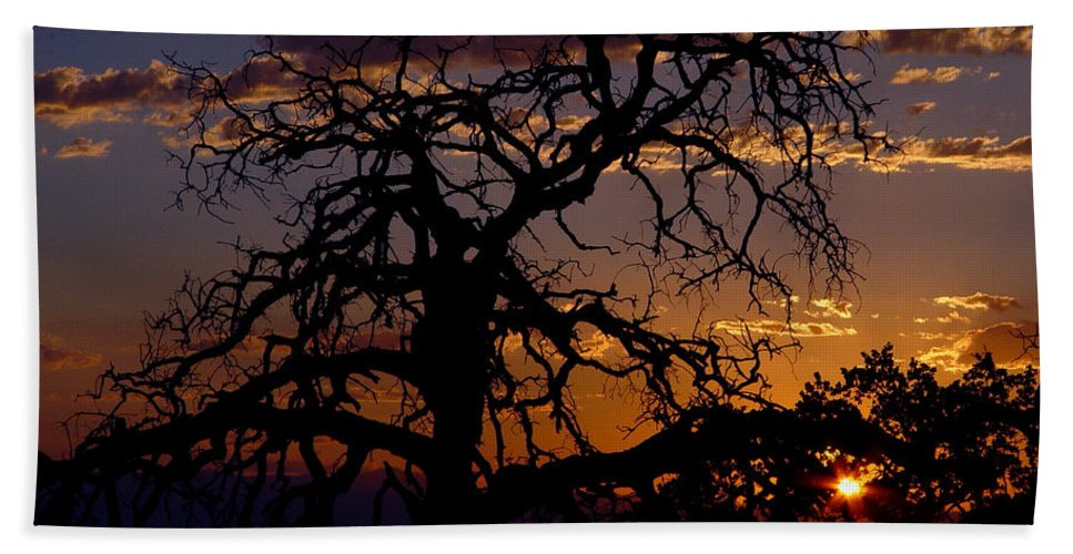 Sunset Hand Towel featuring the photograph Golden Hour by Peter Piatt