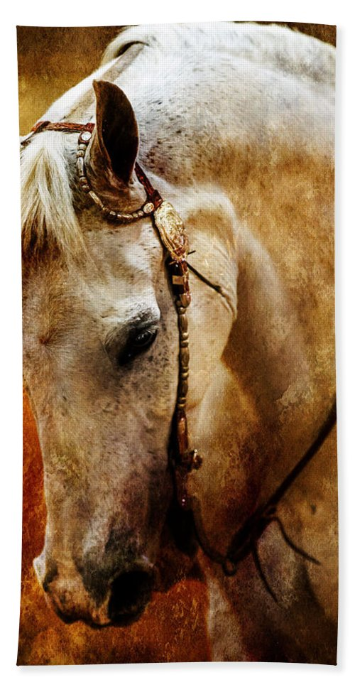 Horse Bath Sheet featuring the photograph Golden by Jeanie Eaton