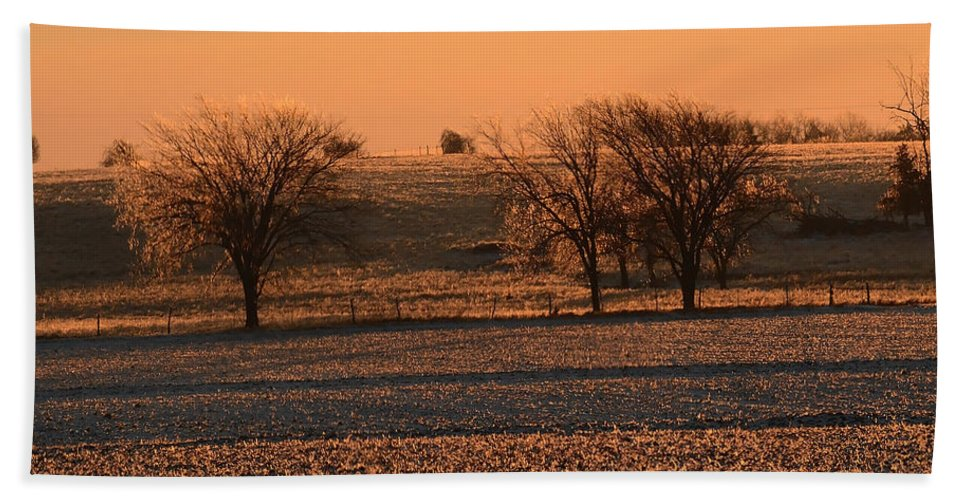 Nature Hand Towel featuring the photograph Golden Land by Pamela Peters