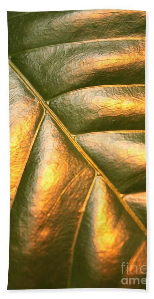 Gold Bath Towel featuring the photograph Golden Leaf by Carol Groenen