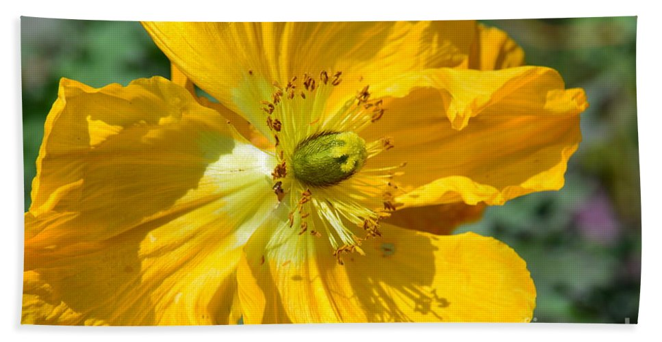 Golden Poppy Expose' Hand Towel featuring the photograph Golden Poppy Expose by Maria Urso