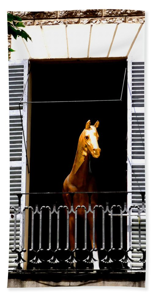 Horse Bath Towel featuring the photograph Golden Stallian by Charles Stuart