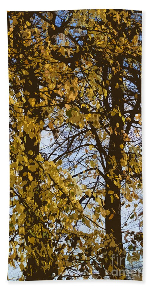 Autumn Bath Towel featuring the photograph Golden Tree 2 by Carol Lynch