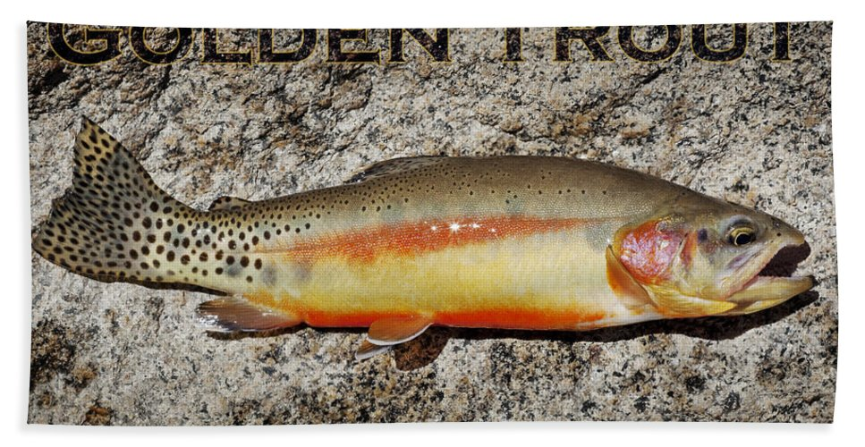 Golden Trout Bath Sheet featuring the photograph Golden Trout by Kelley King