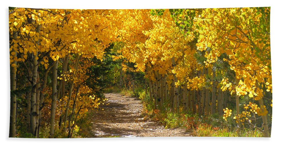 Fall Autumn Walk Path Hike Aspen Rocky Mountains Goldhill Sunny Bath Sheet featuring the photograph Golden Tunnel by George Tuffy