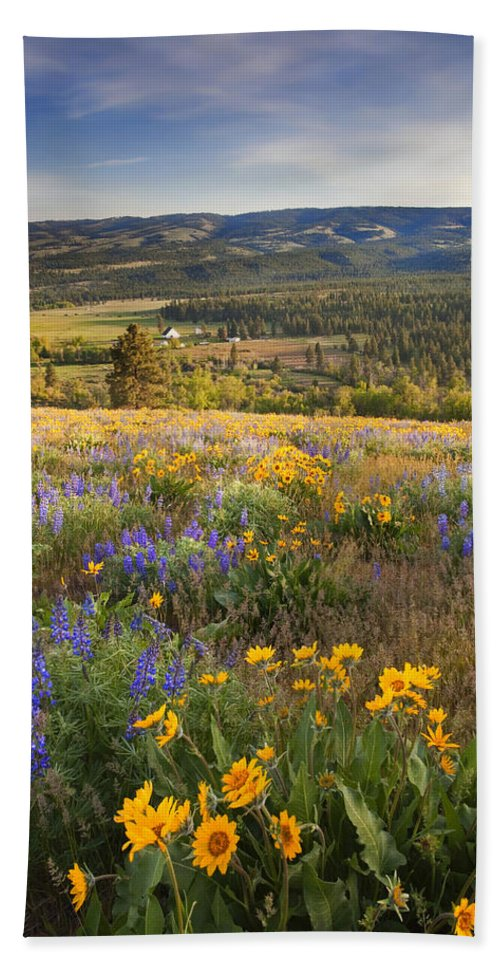 Wildflowers Bath Towel featuring the photograph Golden Valley by Mike Dawson