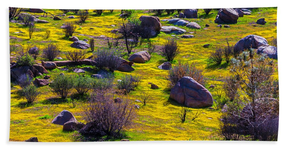 Color Hand Towel featuring the photograph Goldenfield Hillside by Garry Gay