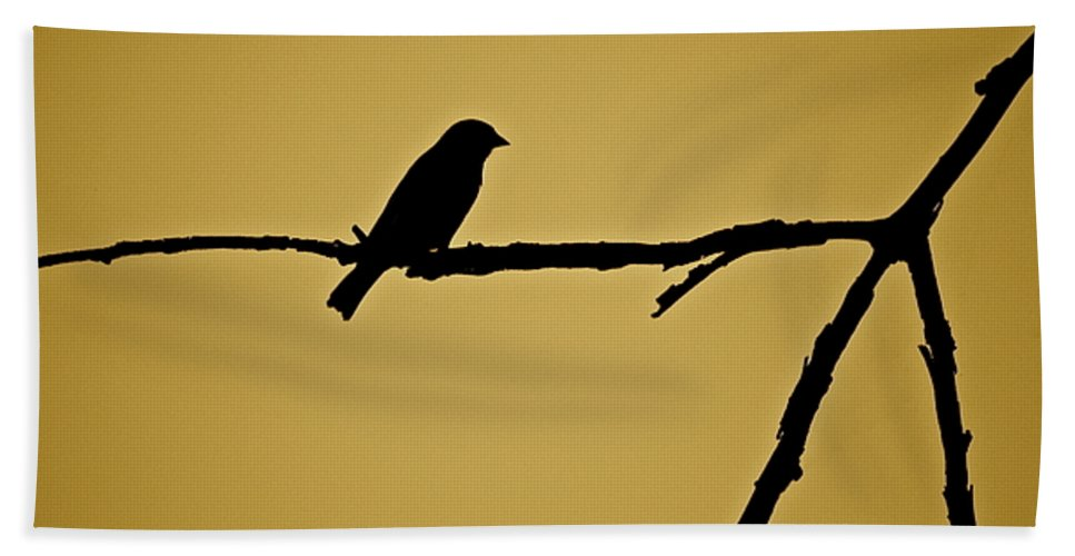 Bird Bath Sheet featuring the photograph Goldfinch by Diana Hatcher