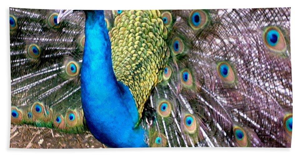 Peacock Bath Sheet featuring the photograph Gorgeous George by Susan Baker