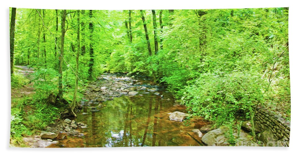 Woodland Stream Bath Sheet featuring the photograph Georgia Stream In Summer by Laura D Young