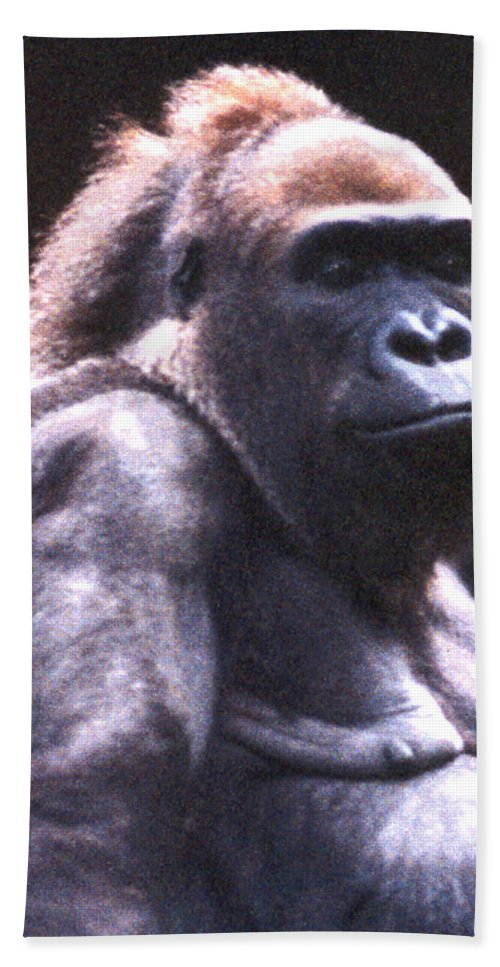 Gorilla Hand Towel featuring the photograph Gorilla by Steve Karol