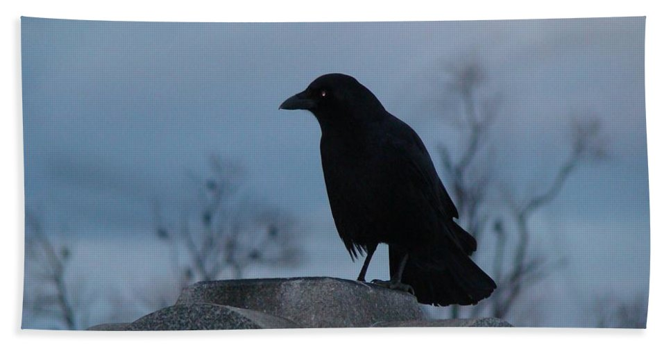 Crow Hand Towel featuring the photograph Gothic Blue Sky And Crow by Gothicrow Images