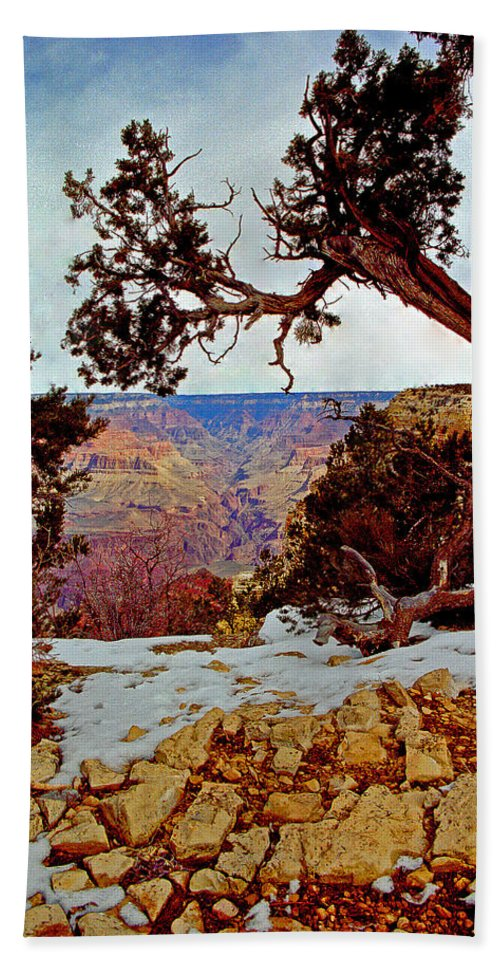 Landscape Bath Sheet featuring the photograph Grand Canyon National Park - Winter On South Rim by Glenn Smith