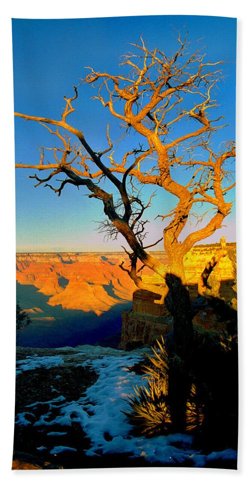 Landscape Bath Sheet featuring the photograph Grand Canyon National Park Winter Sunrise On South Rim by Glenn W Smith