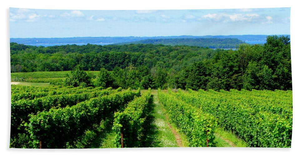 Scenic Bath Towel featuring the photograph Grapevines On Old Mission Peninsula - Traverse City Michigan by Michelle Calkins