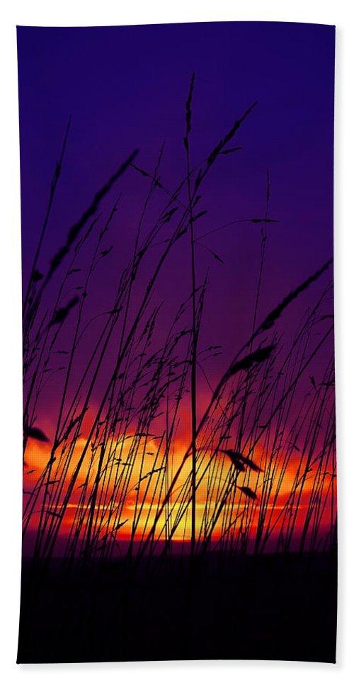 Black Bath Sheet featuring the photograph Grass At Dusk by Svetlana Sewell
