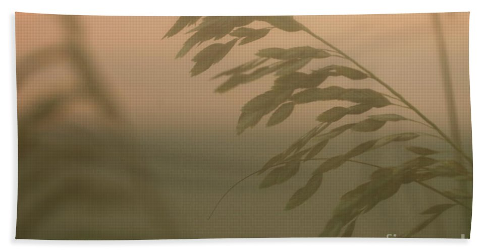 Green Bath Towel featuring the photograph Grasses And Mist by Nadine Rippelmeyer