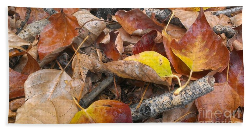 Autumn Bath Sheet featuring the photograph Graveyard by LKB Art and Photography