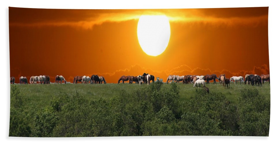 Horses Herd Sunset Grass Trees Nature Animals Scenery Sun Bath Sheet featuring the photograph Grazing by Andrea Lawrence