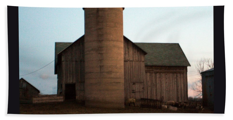 Barn Bath Towel featuring the photograph Grazing At Dawn by Tim Nyberg