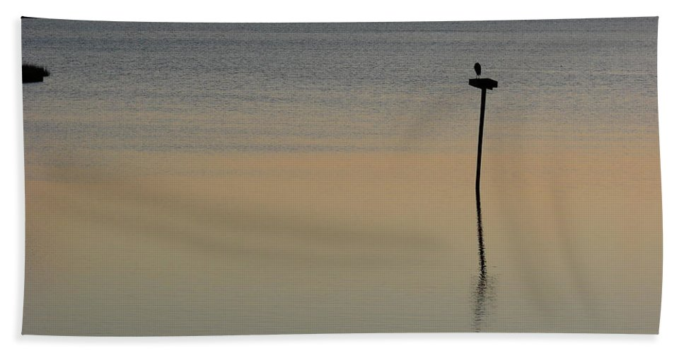 Hampton Bath Sheet featuring the photograph Great Blue Heron II by Brett Winn