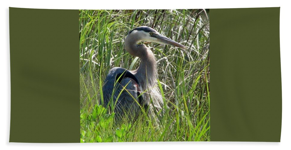 Bird Hand Towel featuring the photograph Great Blue Heron by J M Farris Photography