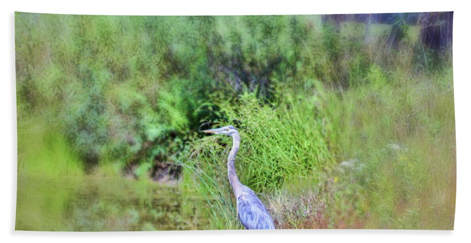 Great Blue Heron Hand Towel featuring the photograph Great Blue Heron Visitor by Kerri Farley