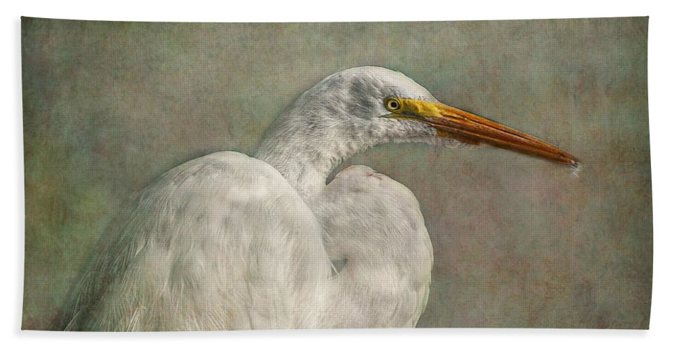 Egret Bath Sheet featuring the photograph Great Egret by Hanny Heim