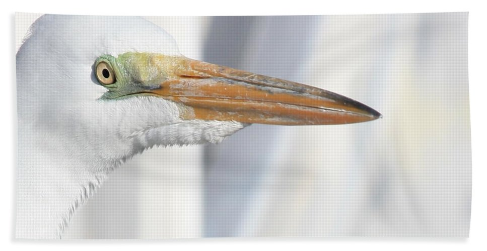 Great Egret Bath Sheet featuring the photograph Great Egret Profile 2 by Carol Groenen