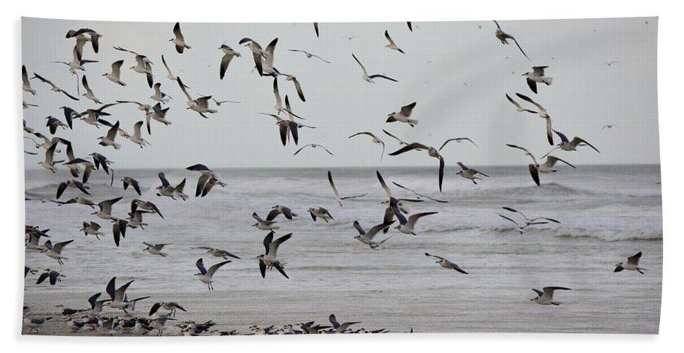 Gulls Bath Sheet featuring the photograph Great Gull Group On The Beach by Patricia Twardzik