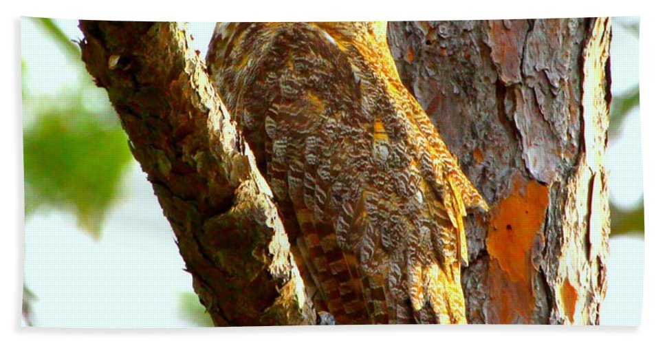 Great Horned Owl Hand Towel featuring the photograph Great Horned Owl Wink by Barbara Bowen