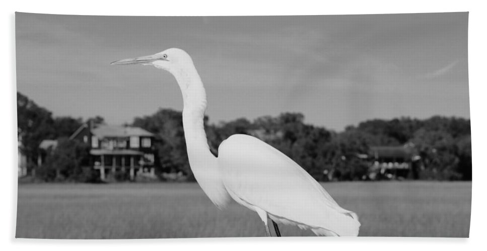 Great White Egret Black And White Bath Sheet featuring the photograph Great White Egret Black And White by Lisa Wooten