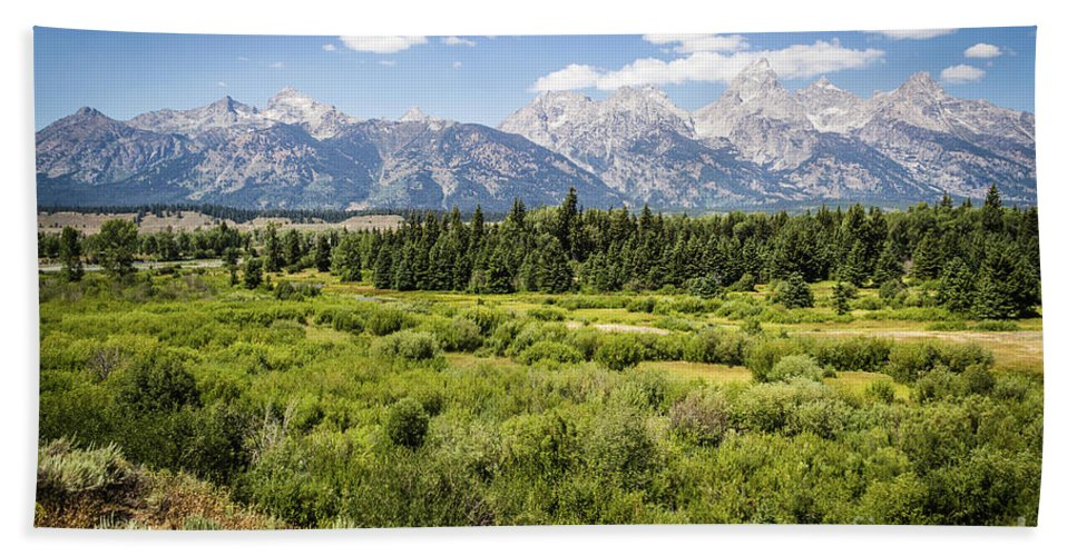 Nature Hand Towel featuring the photograph Green Field by Mirko Chianucci
