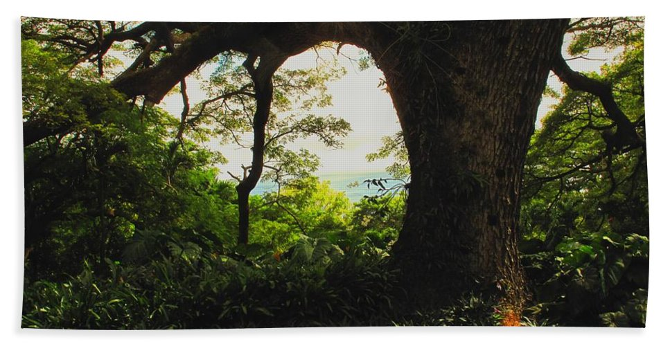 Tropical Hand Towel featuring the photograph Green Giant by Ian MacDonald