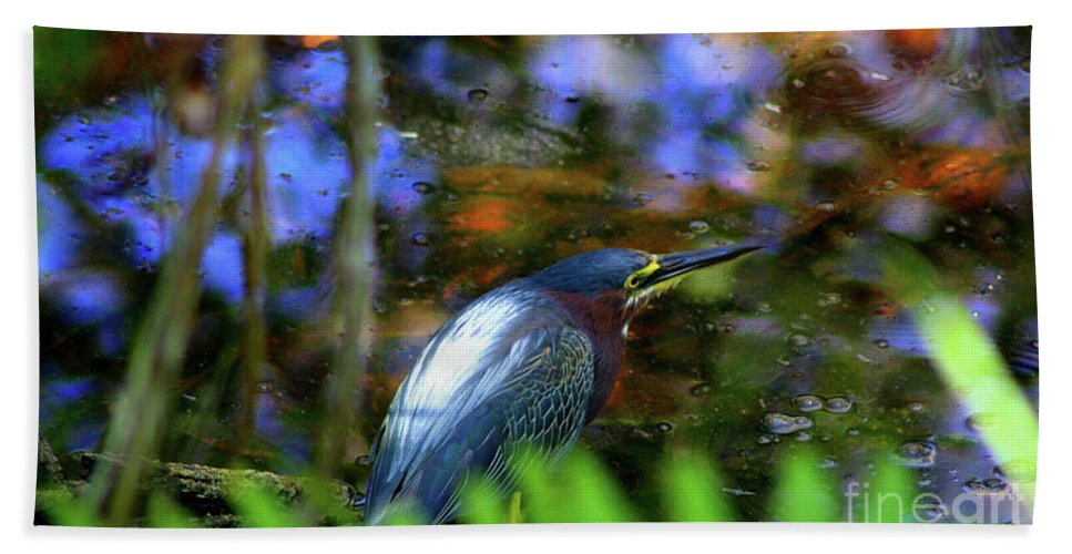 Green Heron Hand Towel featuring the photograph Green Heron by Patti Whitten