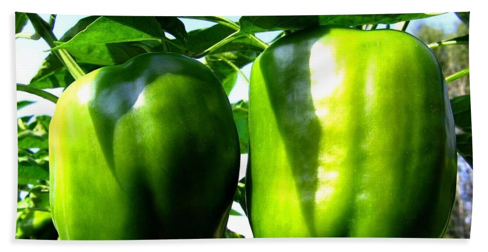 Green Peppers Hand Towel featuring the photograph Green Peppers by Will Borden