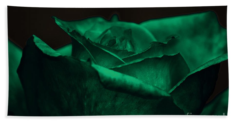 Clay Hand Towel featuring the photograph Green Rose by Clayton Bruster