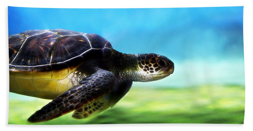 Green Hand Towel featuring the photograph Green Sea Turtle 2 by Marilyn Hunt