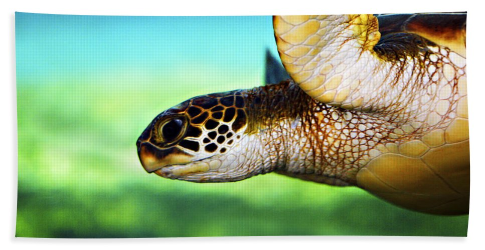 Green Bath Towel featuring the photograph Green Sea Turtle by Marilyn Hunt