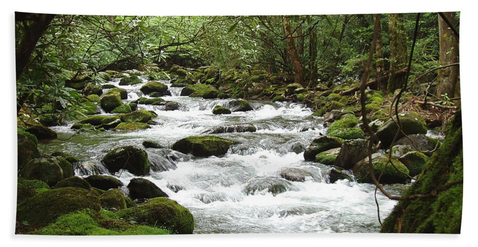 Smoky Mountains Bath Sheet featuring the photograph Greenbrier River Scene 2 by Nancy Mueller