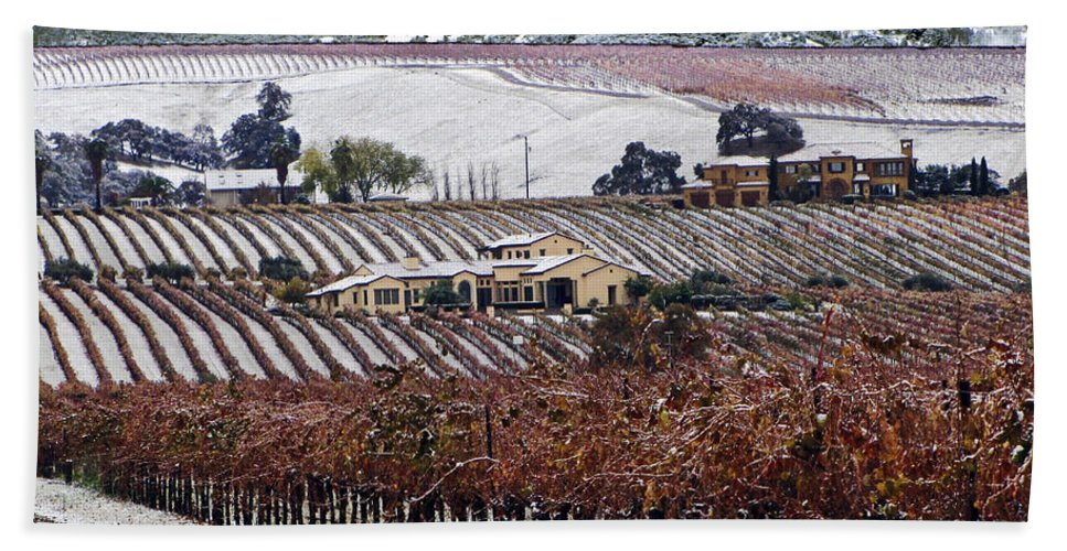 Vineyard Hand Towel featuring the photograph Greenville Vineyard In Snow by Karen W Meyer