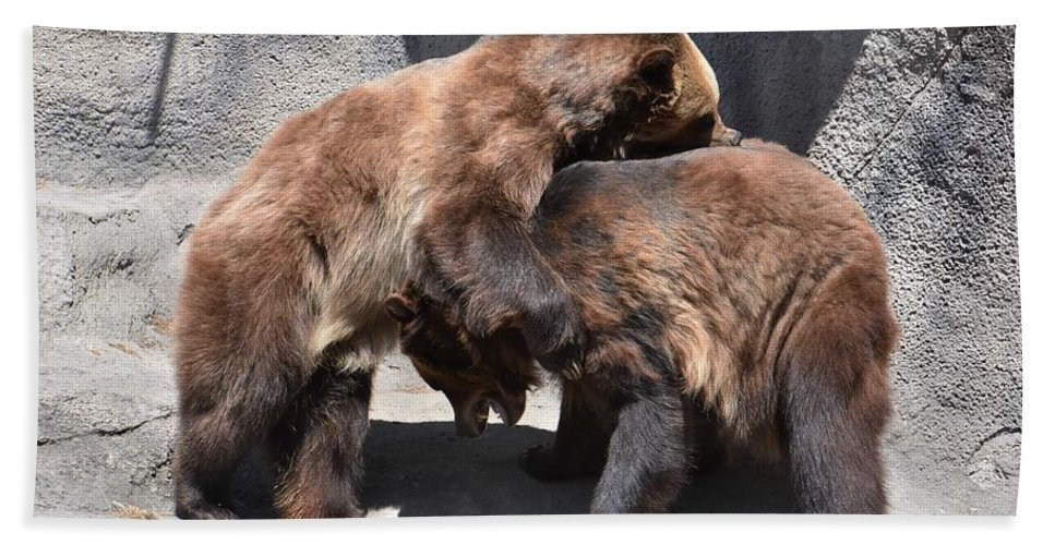 Grizzly Bear Bath Towel featuring the photograph Grizzlies' Playtime 4 by Flo McKinley