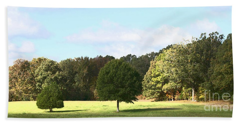 Tree Hand Towel featuring the photograph Growing Up by Amanda Barcon