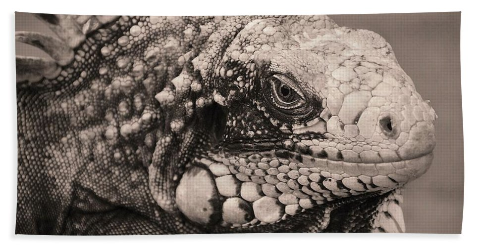 Lizard Hand Towel featuring the photograph Spike by David Coleman