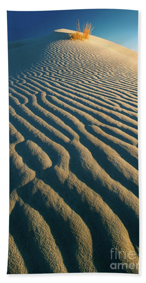 America Bath Sheet featuring the photograph Guadalupe Dunes by Inge Johnsson