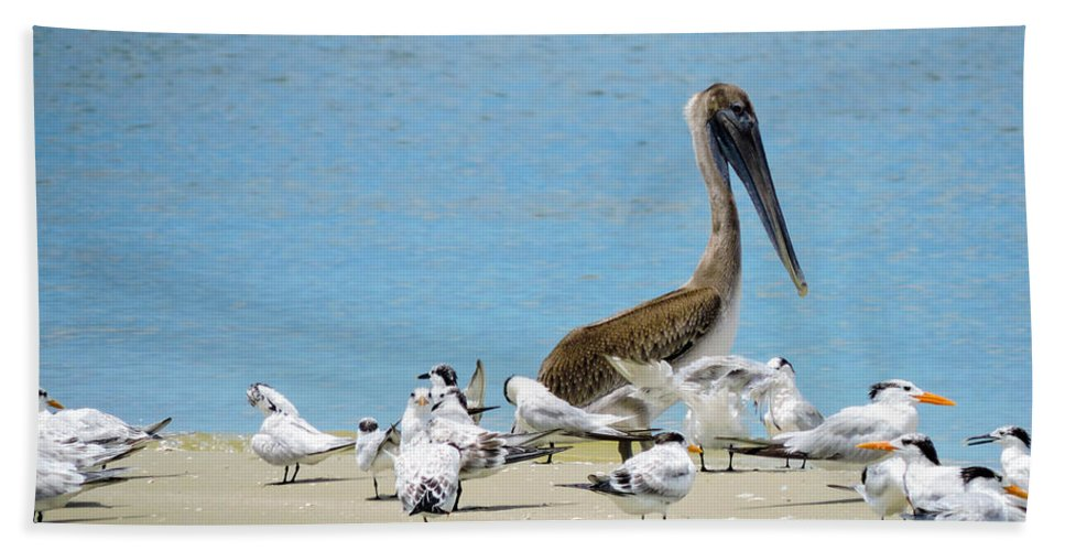 Shorebirds Bath Sheet featuring the photograph Guarding The Bar by Marilee Noland